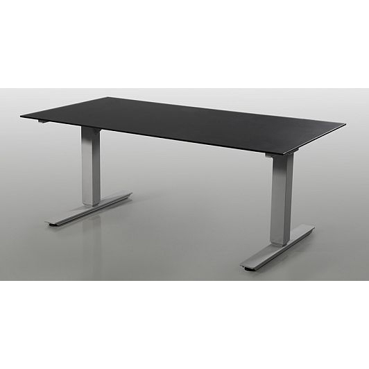 Selectric Height Adjustable Desk