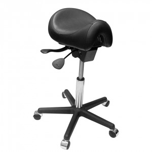 Ergo_Saddle_Seat_4fcc363e8ee53.jpg
