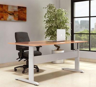 Conset Sit Stand Desk
